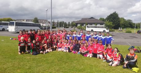 250 kids attend annual primary school blitz at Buccaneers RFC
