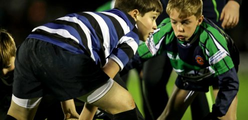 Six clubs take part in interprovincial half-time minis rugby